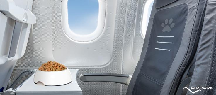 Trasporto animali in aereo